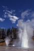 Turban Geyser - Yellowstone - USA