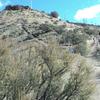 Table Rock Walk