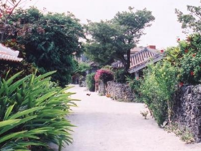 Typical Street Scene On Taketomi