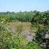 Tambopata River