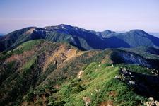 Mount Tekari