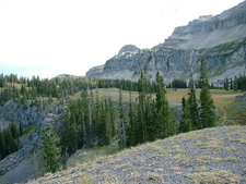 Terrace Above South Fork Of Teton Creek
