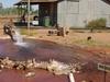 Hot Water Bore Hole Of Thargomindah
