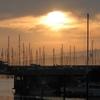 The Berkeley Marina During Sunset