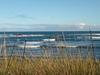 Coast Of Philip Island