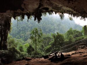 Parque Nacional Niah