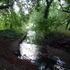 Río Ravensbourne