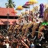 Thrippunithura Elephants Panchavadyam