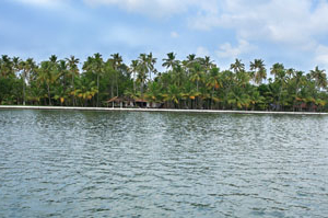 The Vembanad House