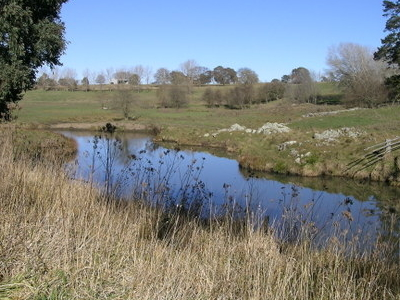 Tia  River