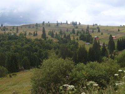 Tihuta Pass