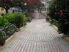 Town Square In Ribeira Brava