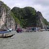 Tourist At Lan Ha Bay