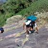 Trekkers