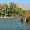 Tule Springs Lake