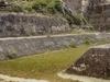 Uaxactun Ballcourt - Petén Department - Guatemala