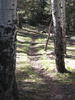 U-Bar Trail