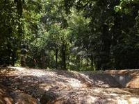 Kulon Parque Nacional Ujung