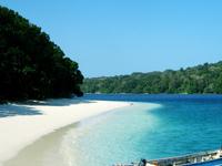 Ujung Kulon Island Trip