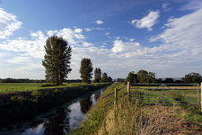 The River Brue