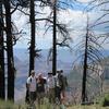 Uncle Jim Trail - Grand Canyon - Arizona - USA