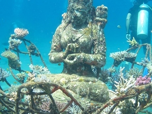 Scuba Diving - Bali