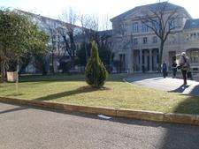 University Lumirere