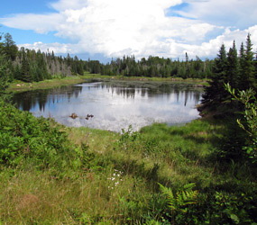 Unnamed Pond From The Cruiser Lake Trail