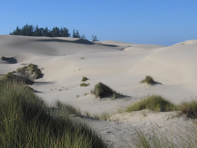 U S A  Oregon  Dunes