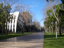 Main Walkway, Lower Campus