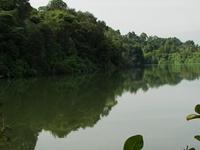 Upper Peirce Reservoir