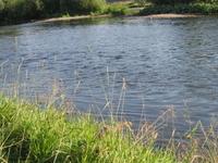 Yuryuzan Río