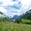 Valley of Flowers Holiday Package