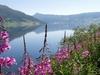 Lake Vangsmjøsa
