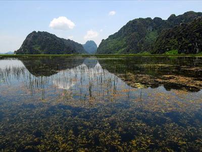 Van Long - Ninh Bình Province