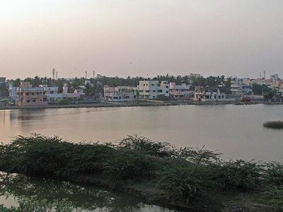 Velachery Lake