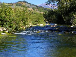 Ventura Río