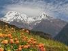 View Annapurna South
