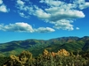 View Blue Ridge From Parkway NC