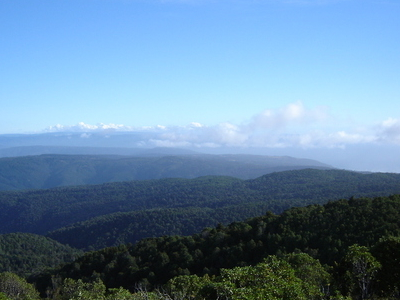 Valdivian Coast Range