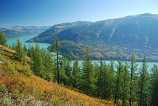 View Lake Kanas