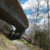 View Linn Cove Viaduct From Below - North Carolina