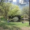 View Manhattan Central Park - New York