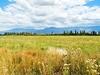 View Mendoza Province Landscape In Argentina