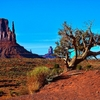 View Monument Valley Landscape AZ