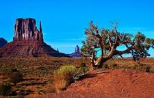 View Monument Valley Landscape AZ