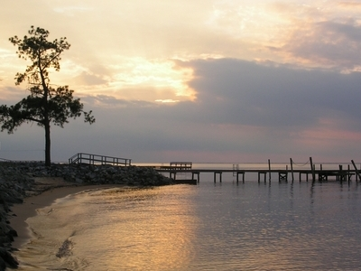View Of Albemarle Sound Near Columbia