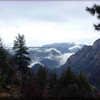 View Of A Misty Oak Creek Canyon
