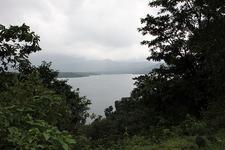 View Of Arthur Lake