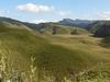 View Of Dzukou Valley